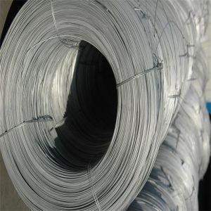 O fio de aço galvanizado arame galvanizado com fio de encadernação