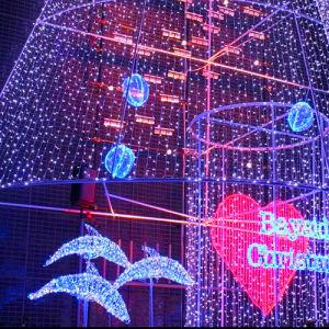 LEDのイルカのモチーフの装飾的で軽いイルカのクリスマスの照明