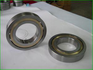 O rolamento de esferas (618/560MA, 618/630MA, 618/670MA)
