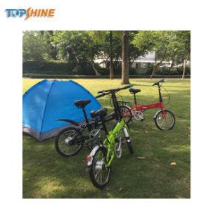 Bicicletta elettrica/bici di piccola piegatura di Topshine 2018 per i capretti