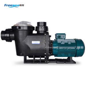 Flb-100 alta pompa ad acqua potente di 3 fasi di flusso 10HP per la piscina