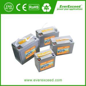 Everexceed /Solar/ 골프 카트 통신 6V 200ah 젤 VRLA 건전지 점화를 위해 태양 깊은 주기 젤 범위 젤