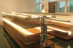 Striscia della striscia 24V 2700K LED di prezzi di fabbrica 5mm LED 120LEDs 8W 2216 LED