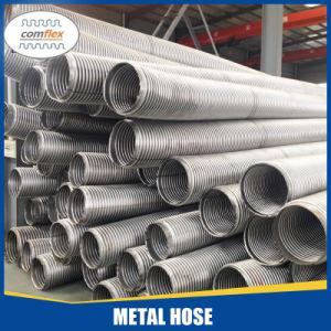 Soffietti leggeri dell'acciaio inossidabile