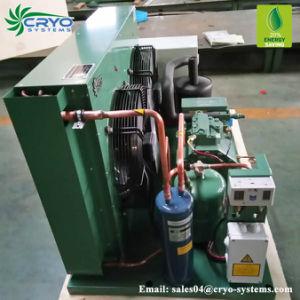 Unidade do condensador Bitzer Refrigeradores para venda Frascold Unidades de condensação