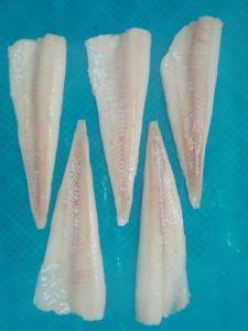 Filetti liberamente congelati del prodotto chimico o trattato di merluzzo pacifico