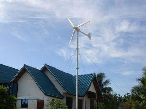 1000W Wind Turbines für Sale