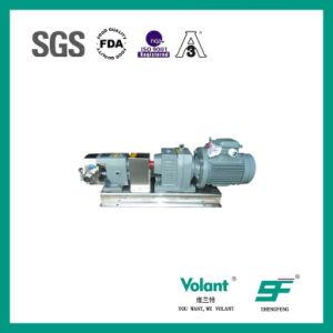 Gang-konstante Geschwindigkeits-Verhältnis-Läufer-Pumpe