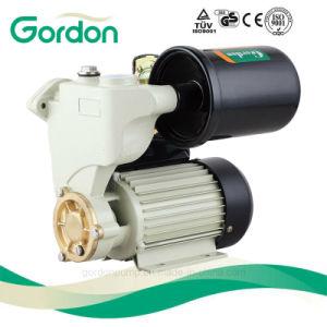 Pompa d'ottone elettrica delle acque pulite della ventola del giardino con i pezzi di ricambio