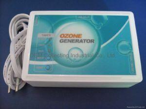 Haupt-Ozon-Generator-Wasser-Reinigungsapparat (SY-W300)