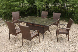 6 место плетеной мебели в саду ресторан на открытом воздухе (FS-2050+ FS-2052)