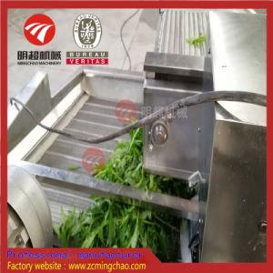Tipo verdura della bolla di aria e lavatrice della frutta