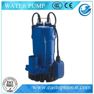 Had Submersible Sewage Pump voor Dirty Water met 0.55HP~1HP