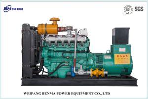 De professionele Generator van het Aardgas van de Producent met van ISO Identification/SGS- Certificaat