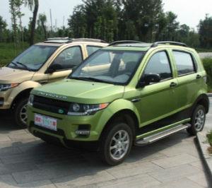 Novo carro de energia do Veículo Eléctrico Large-Space Adulto