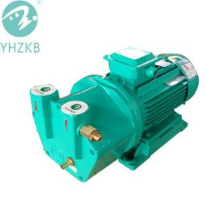 Sk-2 4kw einzelnes Stadiums-flüssige Ring-Vakuumpumpe/Luftpumpe