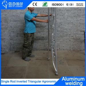 China Fornecedor 3.3Meter agronómicos invertida escada degrau da escada de Metal