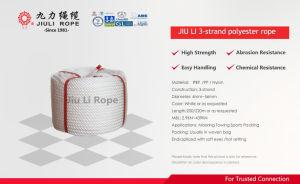 Le CCI Li PET polyester tressé PA 3 brins de corde en nylon