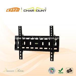 경사 LCD 텔레비젼 스테인리스 벽 마운트 (CT-PLB-303)