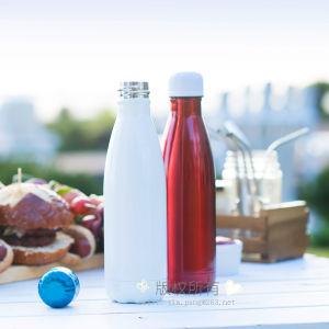 9 de Fles van het Metaal van de Fles van de Sport van de Fles van het Water van het Roestvrij staal van oz