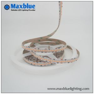 Indicatore luminoso di striscia della striscia LED di RoHS LED del Ce di alta qualità