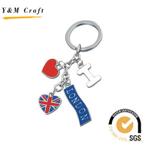 금속 아름다운 열쇠 고리 또는 열쇠 고리 또는 키 홀더 또는 부속품 (Y03242)