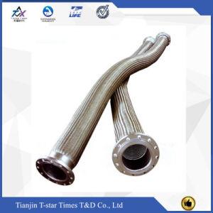 Tubo flessibile ondulato Braided d'acciaio del metallo flessibile del fornitore