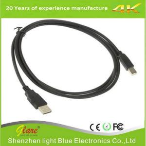 Drucker-Kabel der gute QualitätsUSB2.0