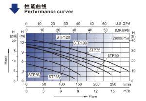 К услугам гостей бассейн насос (STP35) с маркировкой CE утвержденных