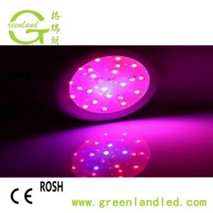 Il UFO pieno LED di alta qualità di spettro di alto potere di RoHS del Ce coltiva l'indicatore luminoso