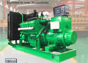 Утвержденном Ce 200квт биогаза генератора