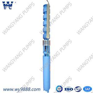 La bomba de agua de la turbina Vertical sumergible bomba establecida con el motor
