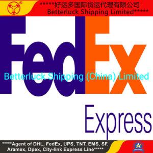 Из Китая FedEx Express Agent низкая стоимость Dropshipping в Индии Дели курьерская служба