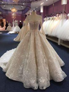 Бусинковый спай Ballgown длинной втулки свадебные платья устраивающих платье Сделано в Китае Wgf1712-31