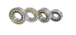 Les fournisseurs d'usine de haute qualité de roulement à rouleaux cylindriques Nu2217e