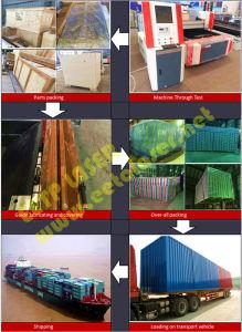 ステンレス鋼/炭素鋼のための高速CNCレーザー機械