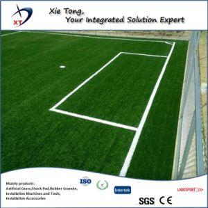 Diseño libre de toda la gente de 7X7 de fútbol de césped sintético del Sistema de campo