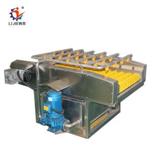 Machine de nettoyage de cerise en acier inoxydable à bas prix
