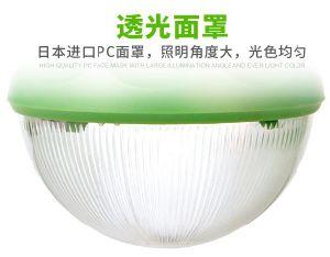 3LED (SRE-88G-3)の高い発電375lumの太陽エネルギーシステム30W太陽電池パネルライト