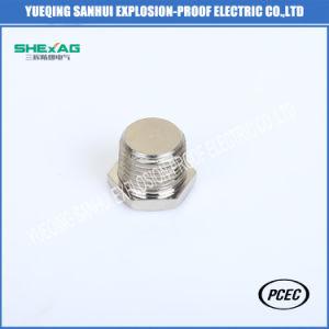 Spina d'arresto capa di esagono di alluminio Brass/SS304 con il controdado ex