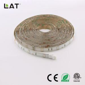 SMD5050 RGB 5M 30/60/120LED TIRA DE LEDS flexible
