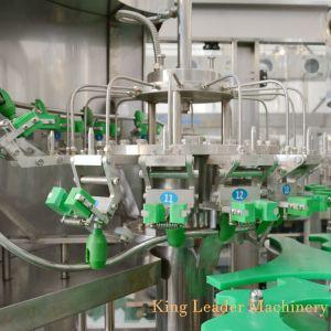 ペットガラスビンのフルーツのConcntratedフルオートマチックジュースの熱い満ちる生産機械