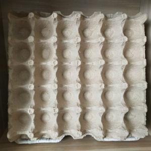 tabuleiro de ovos de papel automático na caixa de ovo máquina de formação