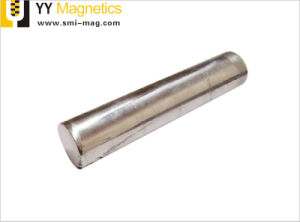 D19mm 네오디뮴 7000 가우스 산업 큰 바 관 자석