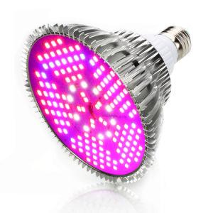 LED de espectro completo Piscina crescer LED de iluminação profissional