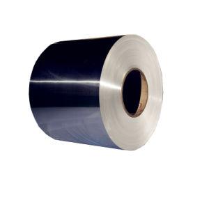 304L 304 316 321 316L 310S de la bobina de acero inoxidable 430