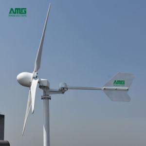 3kw à haute efficacité énergétique éolienne d'accueil