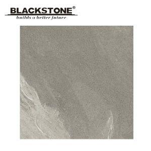 De nieuwe Plattelander Verglaasde Tegel van de Vloer met Grijze Kleur 600X600 (BSA05705)