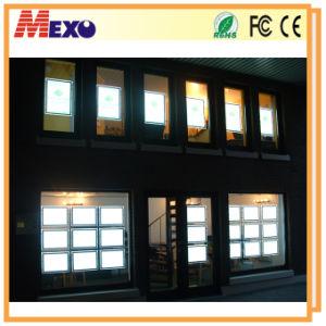 La finestra dell'agente immobiliare visualizza le scatole chiare ultra cristalline del LED