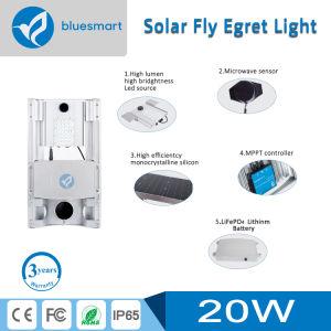 piccolo indicatore luminoso di via di notte del sensore solare 20W